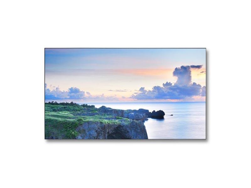 46 ZOLL LED LCD – NEC MULTISYNC X463UN